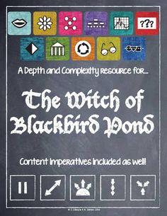 Chapter 21 Witch Of Blackbird Pond?