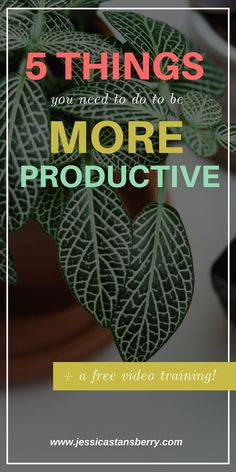 """I get the question """"How do you do it all"""" all.the.time so, in this video, Im sharing some productivity hacks that I use to be more productive in my life and business so every day isnt spent doing tasks that are pointless. #productivity #productivitytips #timebatching #planner #planning #plannigntips #productive"""