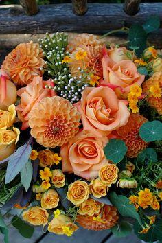 Fall Flowers | claredayflowers.ca