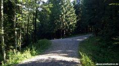 Von #Benediktbeuern zur Tutzinger Hütte, #Benediktenwand, #Isarwinkel http://alpenreisefuehrer.de/deutschland/isarwinkel/von-benediktbeuern-zur-tutzinger-huette?utm_source=pinterest&utm_medium=link&utm_term=isarwinkel&utm_campaign=social