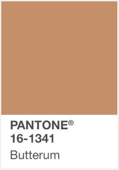 PANTONE BUTTERUM COLOUR INSPIRATION http://www.administrie.com/colour-inspiration/
