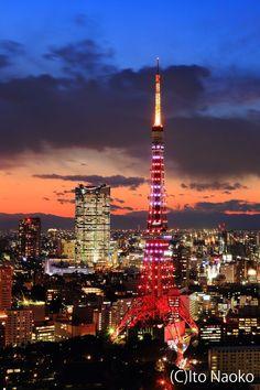 Tokyo Tower by Naoko Ito