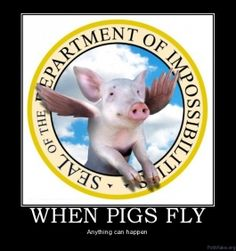34 Best When Pigs Fly Images Flying Pig Pigs Piglets