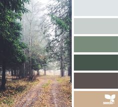 { color path } image via: @djmight