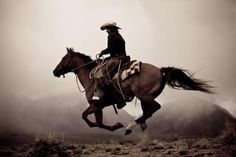 Into the West Cowgirl And Horse, Cowboy Art, Horse Love, Horse Riding, Horse Girl, All The Pretty Horses, Beautiful Horses, Westerns, Arte Equina