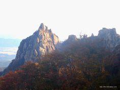 100대명산 월출산(月出山) 등산후기