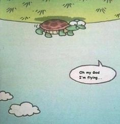 Life is all a matter of perspective.