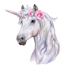 unicorn drawing - unicorn drawing + unicorn drawing easy + unicorn drawing sketches + unicorn drawing easy step by step + unicorn drawing easy for kids + unicorn drawing cute + unicorn drawing fantasy creatures + unicorn drawing realistic Unicorn Painting, Unicorn Drawing, Unicorn Art, Unicorn Sketch, Unicorn Horse, Unicorn Humor, White Unicorn, Unicorn Crafts, Rainbow Unicorn