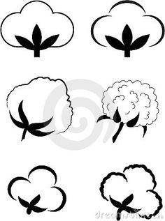 Cotton (Gossypium).Element for design vector illustration.