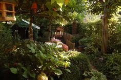 rob van der linden tuin - Google Search