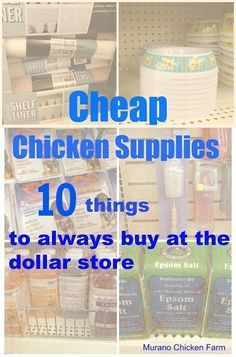 10 common chicken supplies that you can buy at the dollar store.