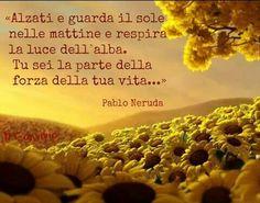 P Neruda