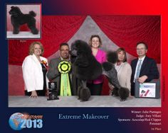 Intergroom, Meadowland Exposition Center, Secaucus, New Jersey Extreme Makeover, Pet Grooming, New Jersey, Emo, Dogs, Pet Dogs, Dog, Doggies