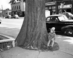 Cowboy Dick Kinsler, 10, perches on the base of an old elm tree on July 2, 1946. The tree was in front of the Florence Bank and is believed to have been planted by the first cashier, J.D. Brisbin, when the bank opened in 1856. It was 6 feet at the base. It was ordered to be razed in 1946 because the city forester pronounced it dangerous. THE WORLD-HERALD