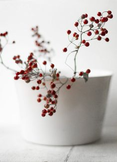 red berries in white porcelain bowl
