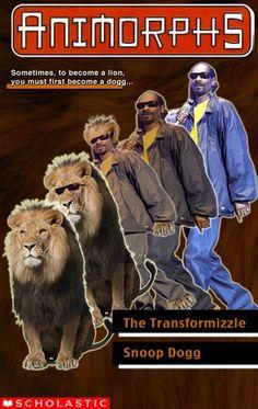 Transformizzle