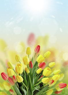 Spring Bouquet Of Tulips Photograph by Iuliia Malivanchuk #IuliiaMalivanchuk #IuliiaMalivanchukFineArtPhotography #ArtForHome #FineArtPrints #HomeDecor #ArtWorks #InteriorDesign #Spring #Bouquet #Tulips