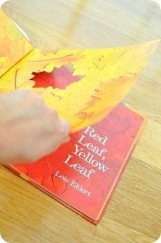 "Activities to go along with ""Red Leaf, Yellow Leaf"" from Totally Tots"