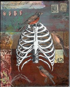 """bird cage"", altered art, mixed media on canvas, collage, bird, sternum, rib cage, anatomy, heart illustrations"