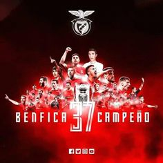Benfica Wallpaper, Football, Instagram, Movie Posters, Curly Blonde, Curly Bob, Curly Hairstyle, Bob Cut, Naturally Curly