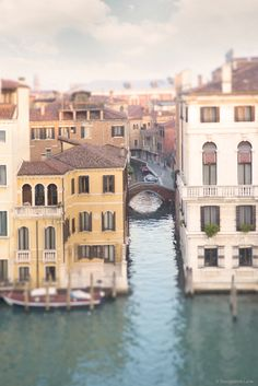 Venice by Georgianna Lane