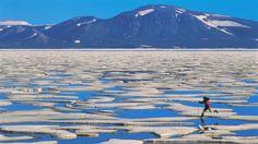 ice Canada islands Axel - Wallpaper (#1526348) / Wallbase.cc