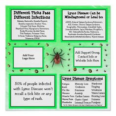Personalized Lyme disease Information Poster - event gifts diy cyo events