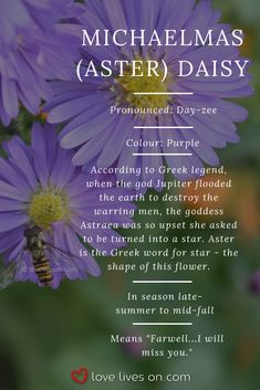 """Funeral Flower Meaning 