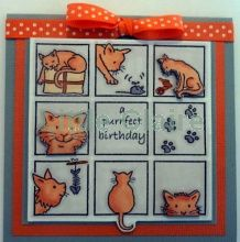 Little Claire Designs Animal Cards, Claire, Card Stock, Card Making, Easy Cards, Xmas, Holiday Decor, Birthday, Stamping