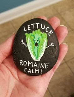 Let us remain calm, pun punny funny rock #paintedrocks #kindnessrocks #funnyrocks