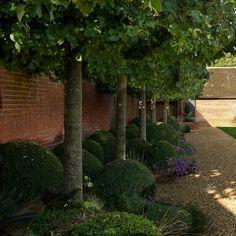 Hawkedon House Suffolk Thomas Hobyln Suffolk Garden Design