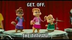 This was me every time someone put their stuff on my timpani...just no.