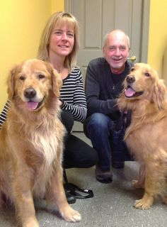Kim Kester & Perry Thibeault opened Best Friends Dog Walking & Pet Resort in Mulligan and Guinness are now clients! Pet Resort, Dog Walking, Guinness, Pets, Friends, Animals And Pets, Amigos, Boyfriends, True Friends