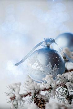 """In anticipo sulla stagione natalizia fioccano le assunzioni! Comincia in questi giorni la """"campagna """" di selezione del personale per tutti i punti vendita!"""