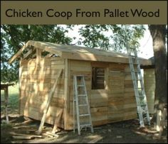 Make-A-Backyard-Chicken-Coop-From-Free-Pallets