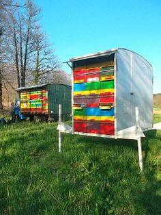 Sloveniean Beehive.   This hive design eliminates all lifting by the beekeeper. Hive is worked from the back, read more...