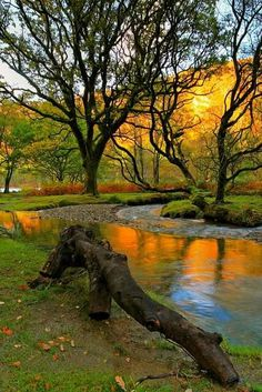 Beautiful Landscape photography : Autumn days in Glendalough Valley Co. Wicklow Ireland (by Tailwalker). Foto Nature, All Nature, Autumn Nature, Places To Travel, Places To See, Travel Destinations, Beautiful World, Beautiful Places, Amazing Places