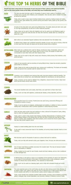 The top 14 herbs of the bible www. The top 14 herbs of the bible www. Home Remedies For Flu, Flu Remedies, Natural Home Remedies, Herbal Remedies, Health Remedies, Holistic Remedies, Healing Herbs, Medicinal Plants, Natural Healing