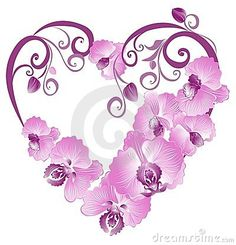 heart orchid - Google Search