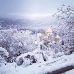 Ein Karem, Jerusalem, Israel 2013 - lovely Xmasy look - the winters in J'lem can be just like this - often!