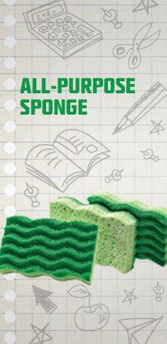 All-Purpose Sponge