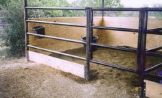 Horse stalls - lumber to keep sand in