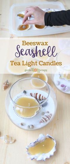 Best Diy Crafts Ideas For Your Home : Beeswax Seashell Tea Lights