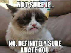Yes...He's still grumpy.