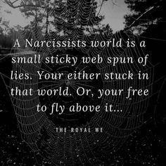 """@movingthroughnarcissisticabuse on Instagram: """"Fly above friends...fly above! #weboflies #liar #pathologicalliar #narcissist #narcissistabuseawareness #sociopath #psychopath…"""" Emotional Vampire, Emotional Abuse, People Lie, Toxic People, Narcissistic Sociopath, Narcissistic Personality Disorder, Compulsive Liar Quotes, Narcissist Father, Dark Triad"""