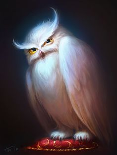 Displeased Owl by Leffsha.deviantart.com on @DeviantArt