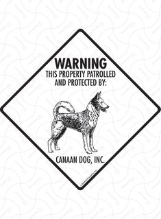 Check out our latest Exterior Warning! Canaan Dog Property Patrolled Aluminum Dog Signs and Vinyl Stickers Property Signs, Canaan Dog, Liquid Paint, Water Solutions, Aluminum Signs, Plastic Card, Dog Signs, New Sign, Stickers