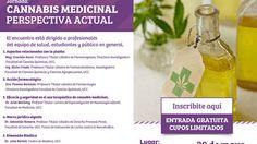 #Continúa el debate en Córdoba por la marihuana medicinal - Dia a Dia: Dia a Dia Continúa el debate en Córdoba por la marihuana medicinal…