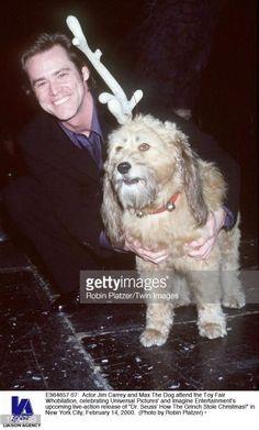jim carrey dog - Szukaj w Google