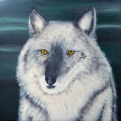 This is an acrylic painting of a gray wolf (or grey wolf) done on a 12 x 12 stretched canvas. I painted this while camping in the summer in Waterton Lakes National Park in Alberta, Canada where gray wolves roam.To view more of my paintings check out my website or my Etsy store!Etsy: Brian Sloan PaintingsWebsite: Brian Sloan Art GalleryI hope you enjoy!